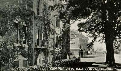 A campus view of Oregon Agricultural College, 1922.