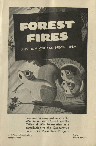 Forest Fires and How You Can Prevent Them