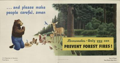 Remember Only You Can Prevent Forest Fires