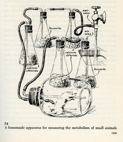 Reproduced illustrations from <em>The Scientific American Book of Projects for the Amateur Scientist</em>, by C. L. Stong.