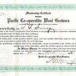 Searcy Pacific Wool Growers Certificate