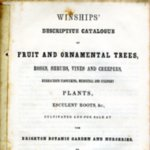 Winships' Descriptive Catalogue of Fruit and Ornamental Trees...etc. Circa 1850s.