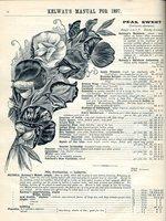 1897.004-052.jpg