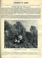 1897.004-093.jpg