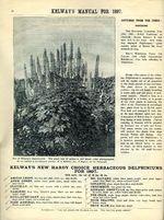 1897.004-094.jpg