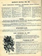1897.004-098.jpg