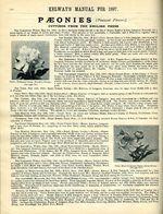 1897.004-118.jpg