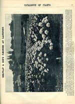 1897.004-121.jpg