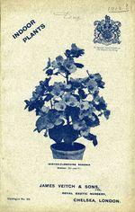 1913.004-cover.jpg