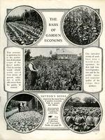 1917.001-001A.jpg