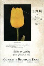 1937.012-cover.jpg